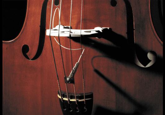 Quatuors à cordes - ACCESSOIRES - Fishman - EFI PRO-FCL-001 - Royez Musik