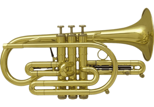 Vents - CORNETS - Getzen - VGE 800 - Royez Musik