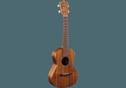 Guitares & Co - UKULELES - Martin - GMA T1K - Royez Musik