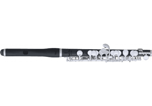 Vents - FLÛTES - FLÛTES TRAVERSIÈRES - Pearl Flute - VPE PFP105ES - Royez Musik
