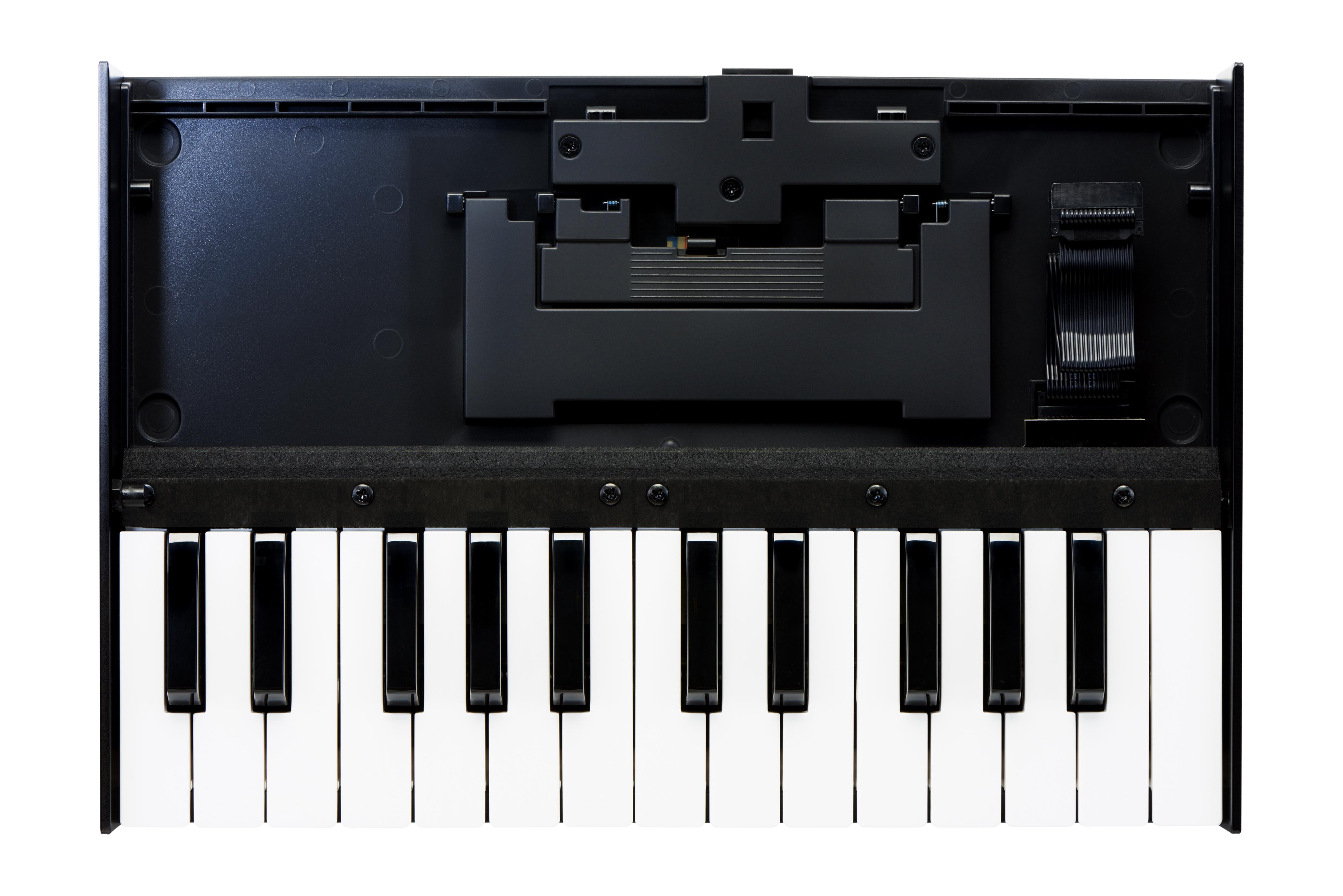 Claviers & Pianos - CLAVIERS - CLAVIERS MAITRES - ROLAND - K-25M - Royez Musik