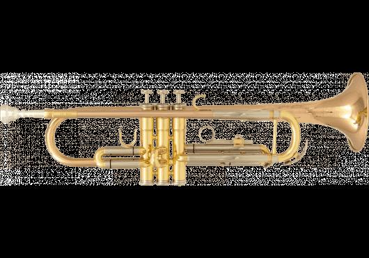 Vents - TROMPETTES - SML Paris - VSM TP600 - Royez Musik