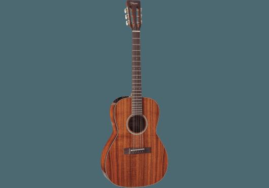 Guitares & Co - GUITARES ACOUSTIQUES - 6 CORDES - Takamine - GTV EF407 - Royez Musik