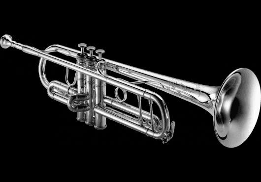 Vents - TROMPETTES - XO - VXO XO1602RSSS4 - Royez Musik
